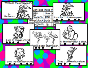 Chameleon book in English Reader for students {more challenging}