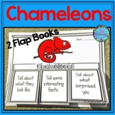 Chameleons Writing Flap Books and Fast Facts Graphic Organizers!