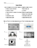 Changing Earth, Electricity, Matter, Magnetism Review Sheet