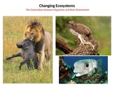 Changing Ecosystems - The Connection between Organisms and