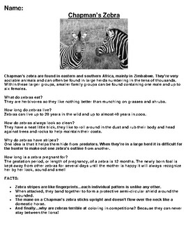 Chapman's Zebra Article, Summary and Drawing Assignment