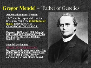 Chapter 12 Mendel & Heredity