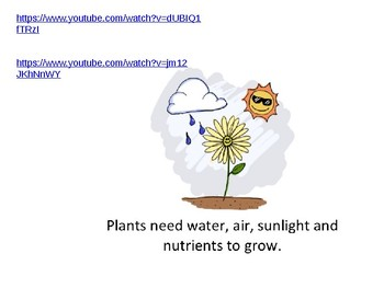Chapter 3 Harcourt Science Power Point 2nd grade