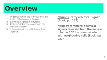 Chapter 8: Neurons