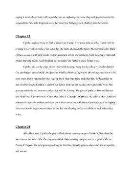 Chapter Summaries for  novel, 'Crick Crack Monkey'
