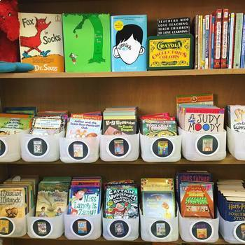 Chapter Book Bin Labels