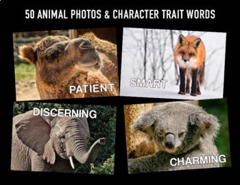 Character Traits Animal Photos
