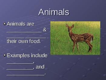 Characteristics & Definition of Life Presentation