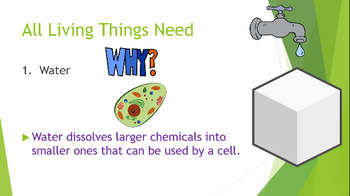 Characteristics & Survival Needs of Living Things Animated PowerPoint