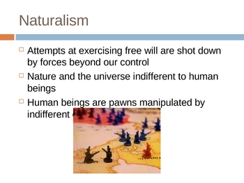 Characteristics of American Naturalism/Art