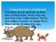 Animal Characteristics: A Guide to Vertebrate and Invertebrate Animals