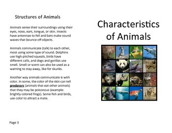 Characteristics of Animals Review Book