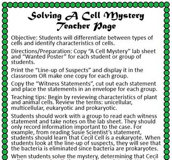 Characteristics of Cells Mystery Activity