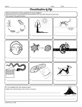 Characteristics of Life Biology Homework Worksheet