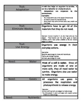 Characteristics of Life Cards