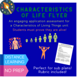 Characteristics of Life Flyer Project