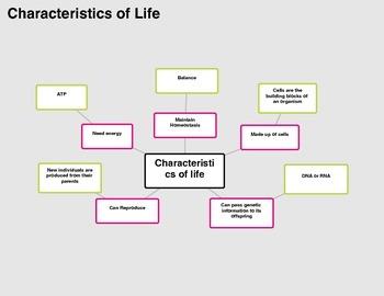 characteristics of a novel pdf
