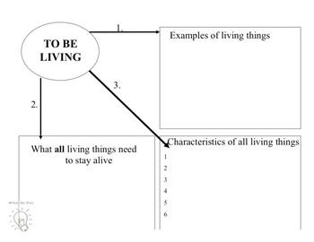 Characteristics Of Life Graphic Organizer