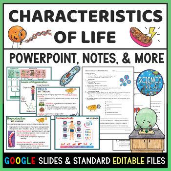 Characteristics of Life Interactive PowerPoint, Notes, Kahoot!, & Homework