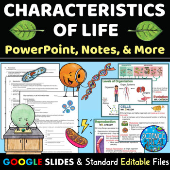 Characteristics Of Life Powerpoint Notes Kahoot Mini Project Bundle