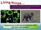 Characteristics of Life Powerpoint