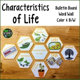 Characteristics of Life: Room Decor, Word Wall: Honeycomb Pattern