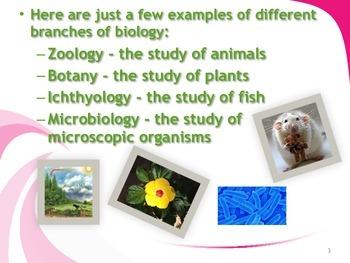 Characteristics of Life Slideshow