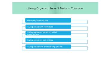 Characteristics of Living Organisms PowerPoint w/quiz