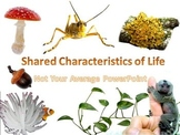Characteristics of Living Things Interactive PowerPoint AN