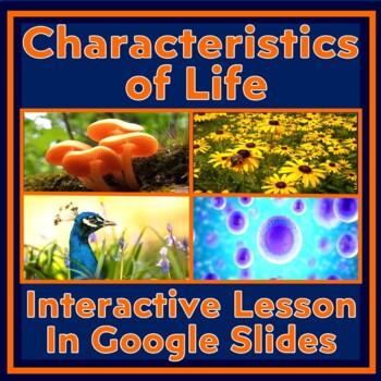 Characteristics of Living Things Lesson:  Made of Cells, Reproduce, etc. (NEW!)