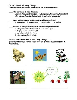 Characteristics of Living Things Worksheet/Homework