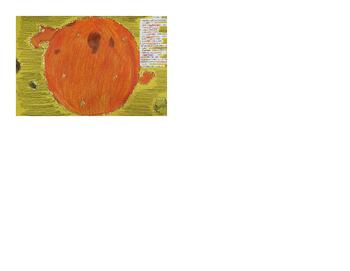 Characteristics of the Sun Lesson