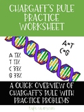 Chargaff's Rule Practice