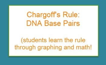 DNA: Chargoffs Rule (Nitrogenous Bases graph)