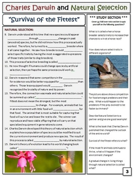 Natural Selection Lesson Plans: Adaptation, Evolution Evidence