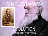 Charles Darwin Natural Selection - PowerPoint