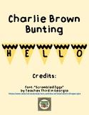 Charlie Brown Bunting