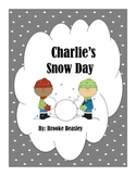 Charlie's Snow Day Reading Passage and Assessment RL.2.1, RL.2.2, RL.2.3, RL.2.5