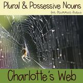 Charlotte's Web: Plurals & Possessives Sorting Activity