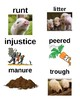 Guided Reading/Read Aloud Plan for Charlotte's Web by E.B. White Level R