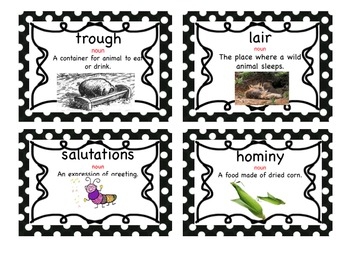 Charlotte's Web Vocabulary Cards ENGLISH