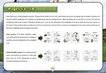 Animal Characteristics Invertebrates Handouts Cards Posters Foldables Worksheets
