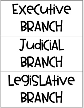 Checks and Balances - Branches of Government Sort