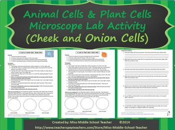 Animal and Plant Cells Microscope Lab (Onion and Cheek Cells)