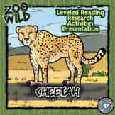 Cheetah - 15 Zoo Wild Resources - Leveled Reading, Slides