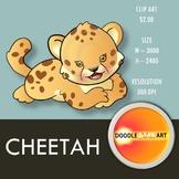 Cheetah Clip Art