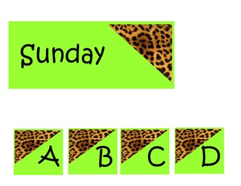 Cheetah Packet Set