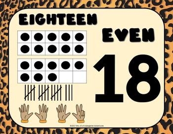 Cheetah Print Bulletin Board Set