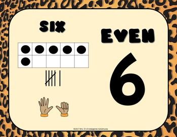 Cheetah Print Math Posters
