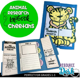 Cheetah Research Project - A Zoo Animal Research Lapbook